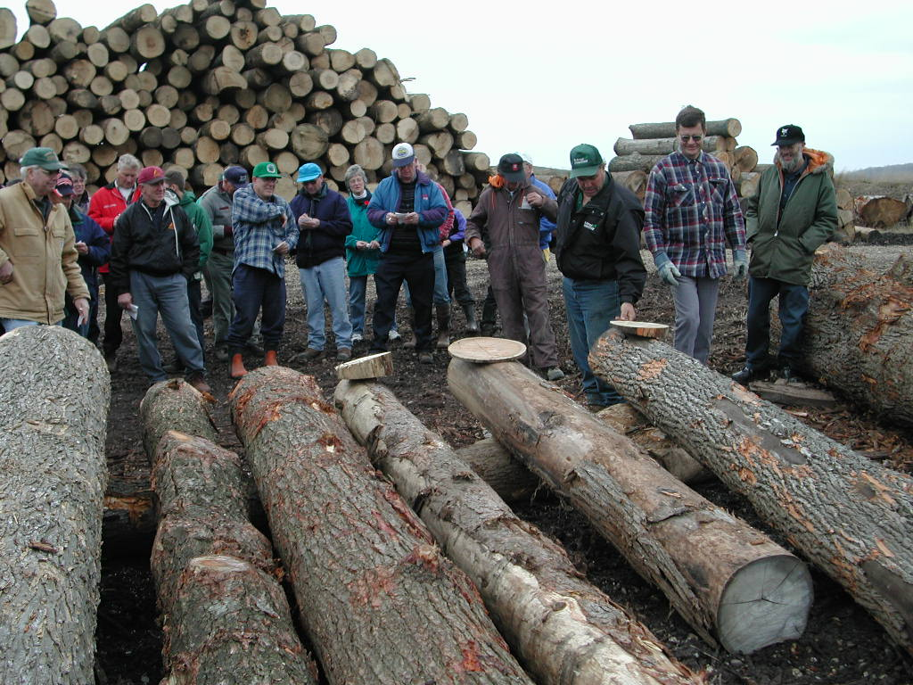 Tour of Bruce Kropf's Woodlot and Log Yard - November 2002