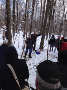 Learning about the productivity of woodlots.